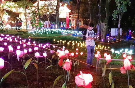 Harga Tiket Kebun Binatang Jurug Tempat Wisata Di Solo Yang Asyik Dan Kekinian Penginapan Net 2021