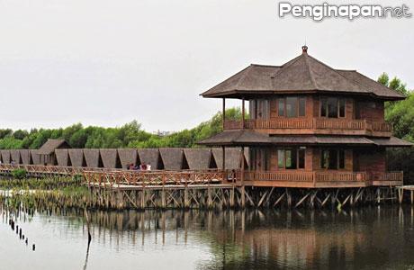 Info Terbaru Tarif Penginapan Di Hutan Mangrove Pantai Indah Kapuk Pik Jakarta Penginapan Net 2021