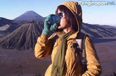 backpacker bromo - phinemo.com