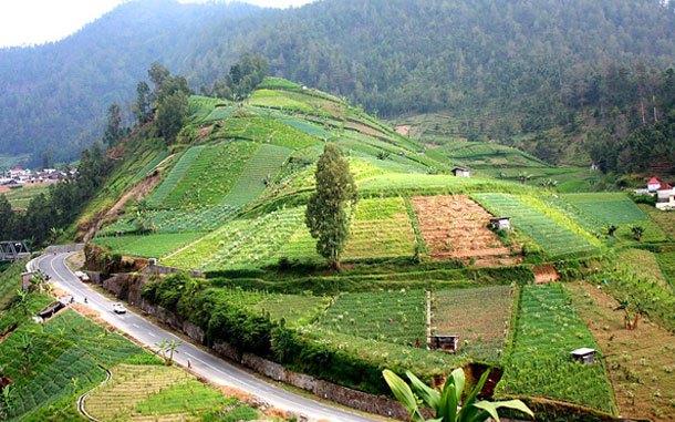 Update Tarif Dan Pilihan Villa Favorit Di Tawangmangu