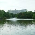 井之頭公園now  1