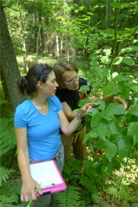Research Grant recipients Autumn Sabo and Katie Frerker at work.