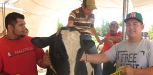 Prepara UABCS encuentro de egresados de Zootecnia