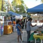 Entre los productos que se ofrecieron se cuenta: pizza, sushi, nachos, fruta, agua purifícada, productos para mascotas y servicio de consultoría.