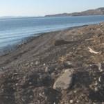 """Por iniciar el programa """"Playas Limpias"""" que contempla la limpieza de 5,000 m3 de playas en Santa Rosalía (Enrique Montaño)."""