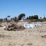 Jóvenes y adultos llevaron a cabo trabajo de deforestación y limpieza dentro y fuera de las casas que tiene la Reserva de la Biosfera del Vizcaíno, la REBIVI y la SEMARNAT.
