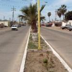 Urgente mantenimiento necesita el bulevar Emiliano Zapata.