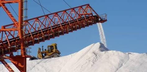 La economía de la empresa no se ha visto sobresaltada por el terrible fenómeno que azotó al país nipón, y la disposición de los accionistas asiáticos ha sido continuar sin cambios la producción de sal.