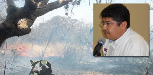 Sobrepasaría un incendio en la Sierra de La Laguna la capacidad local para combatirlo: CONAFOR