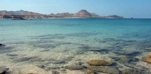 "Cabo Cortés no dañará Cabo Pulmo asegura Hansa. ""Las ONGs desinforman y confunden"""