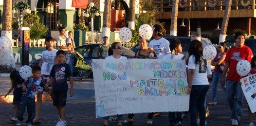 Con marcha exigen leyes que protejan a los animales del maltrato