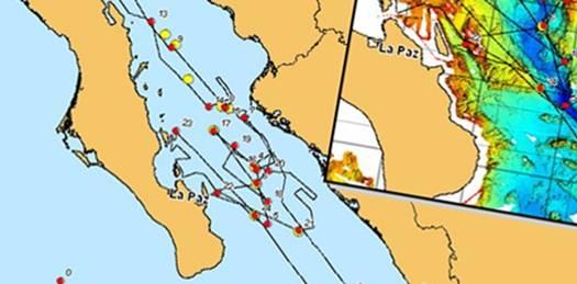 Inicia Hansa estudios solicitados por Semarnat para autorizar desarrollo en Cabo Pulmo