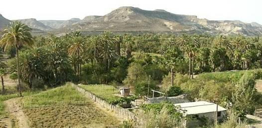 En sus manos tiene el nuevo gobierno el rescatar al campo sudcaliforniano: CNC