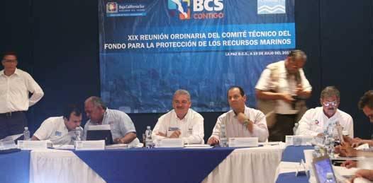 Reprocha  FONMAR al gobernador que no se abocara a la protección del Dorado