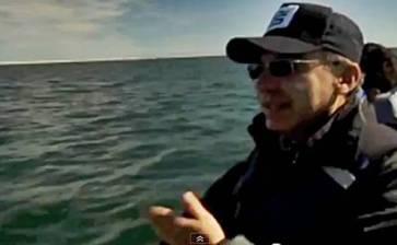 Muestra Calderón las ballenas grises en documental de la BBC