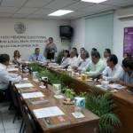 Este Consejo está conformado por seis consejeros y consejeras locales, así como representantes de los distintos partidos políticos en el país.