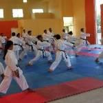 Este curso tuvo lugar en las instalaciones del Centro de Alto Rendimiento de Karate do ubicado en la unidad deportiva Nuevo Sol, donde se dieron cita alrededor de 50 elementos entre entrenadores de diferentes municipios y destacados deportistas, con el propósito de perfeccionar aspectos técnicos de las katas.