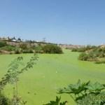 La contaminación visual por agua acumulada afecta la imagen del puerto sanluqueño y su hotelería.
