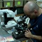 """Mario Alberto Díaz López, egresado del Posgrado de CIMACO de la UABCS, realizó una evaluación de los efectos sobre el bentos del emisor submarino de """"Minera y Metalúrgica El Boleo SA de CV"""" en Santa Rosalía."""