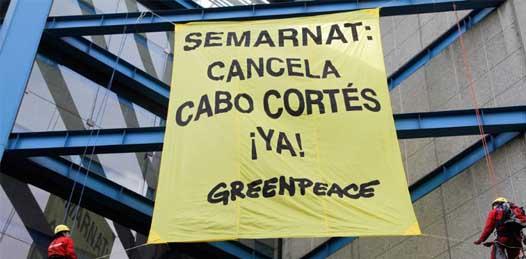 """Que ya cancelen Cabo Cortés"" pidieron ambientalistas a Calderón"