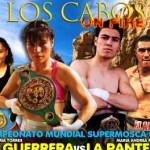 """Ana María """"Guerrera"""" Torres se encuentra en plena recta final de su preparación, rumbo a la que será la undécima defensa del campeonato supermosca del Consejo Mundial de Boxeo."""
