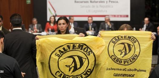 Incomodaron actores y ambientalistas al titular de SEMARNAT durante su defensa de Cabo Cortés