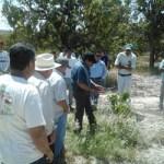 """La UABCS y la Fundación Produce impartieron los talleres """"Elaboración de composta"""" y """"Podas de frutales (mango)"""" a productores de la comunidad de Santiago."""