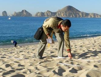 Ahora serán las playas de El Médano, Palmilla y El Chileno las que podrán ser ofrecidas como un atractivo con certificación, lo que para muchos turistas del mundo es importante.