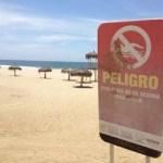 Cabe destacar la importancia de obedecer las señales preventivas que se mantienen en las playas para evitar desenlaces graves o fatales.