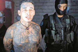 Adiestran maras a cárteles mexicanos