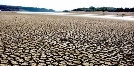 """""""Solamente las lluvias resolverán el problema que vive el campo de BCS"""" descubre el titular de CONAGUA"""