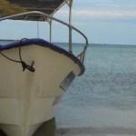Las costas sudcalifornianas están siendo asaltadas por embarcaciones de otras entidades, ostentando permisos federales que rebasan las facultades del estado, hizo ver la diputada independiente Edith Aguilar Villavicencio, quien subrayó que el mayor desfalco ocurre en el municipio de Mulegé.