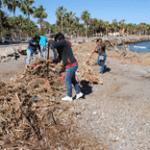 se ha estado mejorando la imagen de las playas