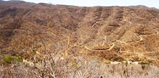 Desecha SEMARNAT solicitud de cambio de uso de suelo de Los Cardones