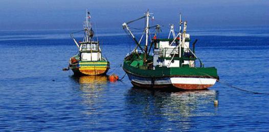 Denuncian cooperativas irregularidades en la creación de Zonas de Refugios Pesqueros