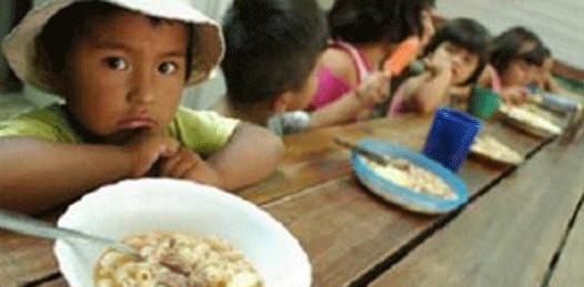 Una simulación la cruzada contra el hambre