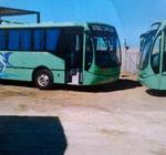 camiones Costa de Oro