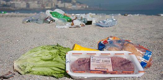 Playas y alimentos seguros, garantiza COEPRIS