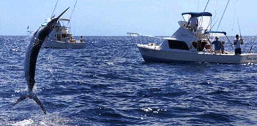Sólo incertidumbre para quienes practican y promueven la pesca deportiva