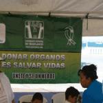 Fundación Ale BCS AC