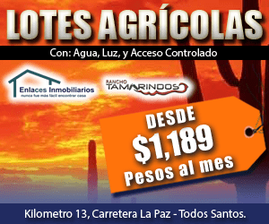 Rancho «Tamarindos»