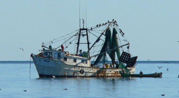 Llegan a acuerdos pescadores  ribereños y empresas sardineras comundeñas
