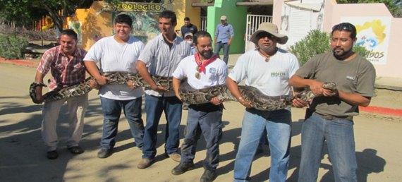Personal de la  PROFEPA trasladó a los animales del Zoológico de Santiago a las instalaciones de la UABCS.