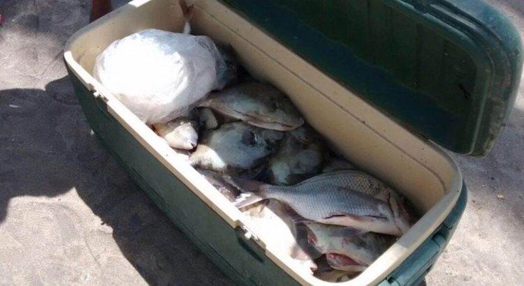 Aún no se reponen los pescadores de La Playita