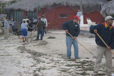 Playas limpias después de la afluencia de vacacionistas