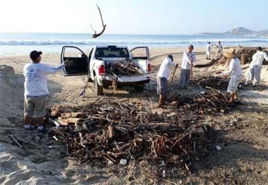 Al 80% el proceso de recuperación y limpieza de playas