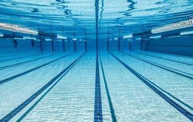 En agosto estará lista la alberca olímpica
