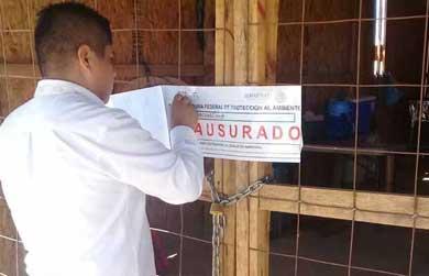 Clausura PROFEPA establecimientos en El Médano
