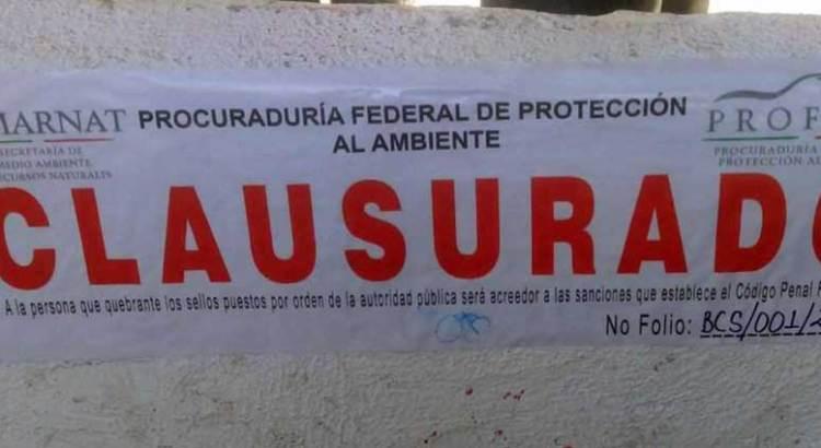 """Clausura PROFEPA parcialmente la mina """"La Testera"""""""