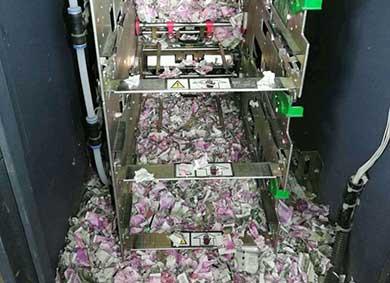 Acabaron las ratas con dinero del cajero